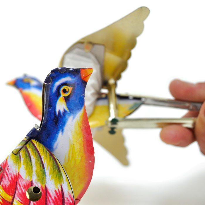 Singing_bird_4e39bdfa606d1.jpg