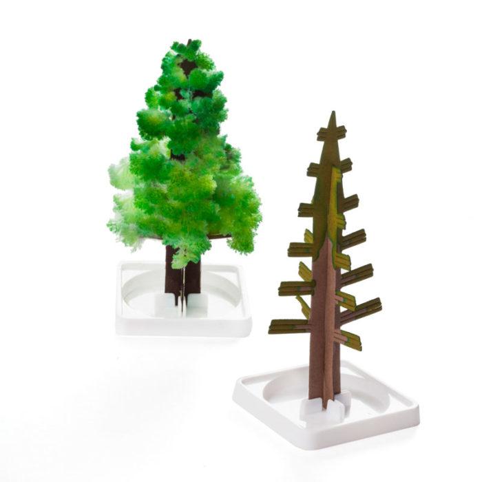 Magic_tree_4edfe353813e6.jpg